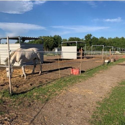Rutas a caballos en Móstoles