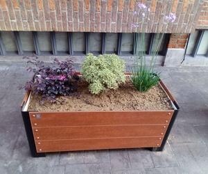 Servicio de jardinería en Leioa