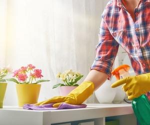 Ayuda en la limpieza y mantenimiento del hogar