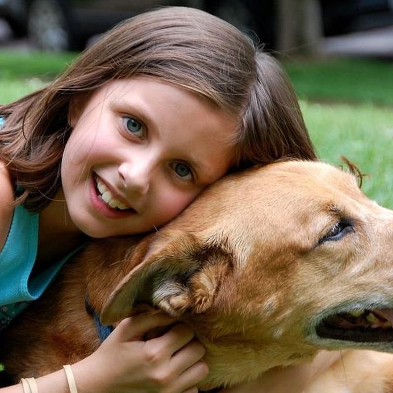 Productos higiene: servicios de Itacan Peluquería Canina