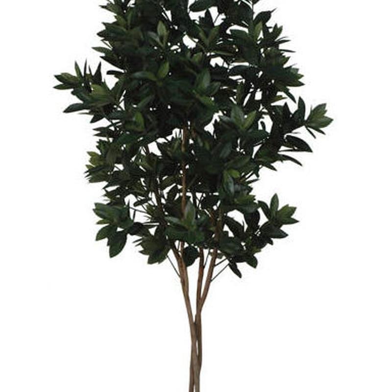 SWEET LINK TREE (1,50 M.) COLOR: VERDE REF.:70552 GR PRECIO: 135,00 €