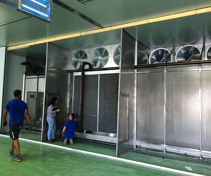 Túneles enfriamiento rapido