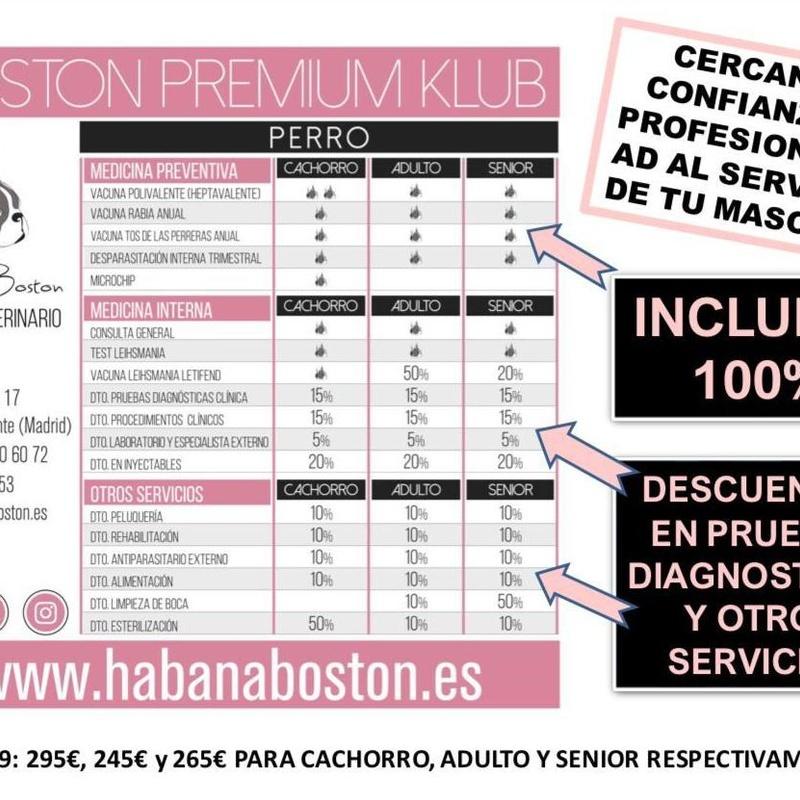 Clinica veterinaria Habana Boston. BOSTON PREMIUM KLUB