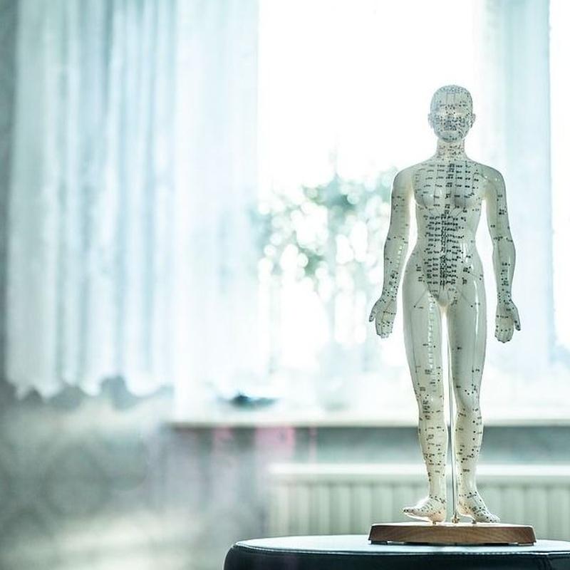 Osteopatía: Servicios  de Fisio+