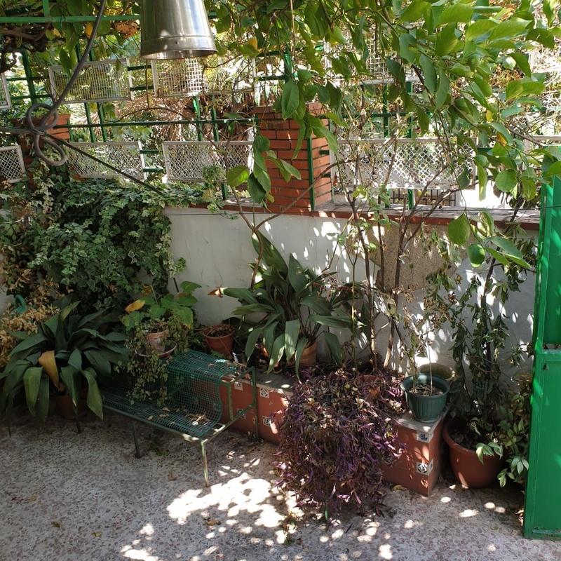 Tradicional casa andaluza: Inmuebles de Inmobiliaria María Díaz