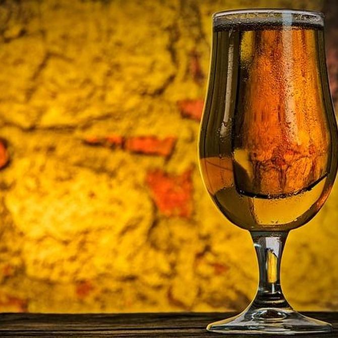 ¿Sabías que la cerveza tiene múltiples beneficios?
