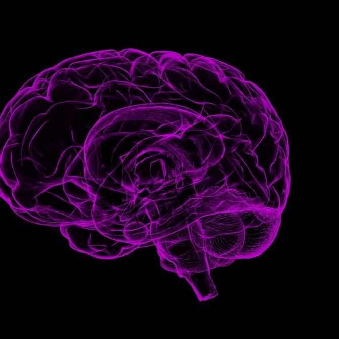 TDAH: toda la información sobre el trastorno