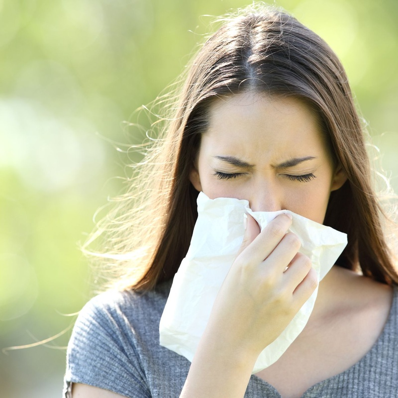 Alergias y sistema inmunológico: Herbolario Hierbabuena. Aluche de Herbolarios Hierbabuena