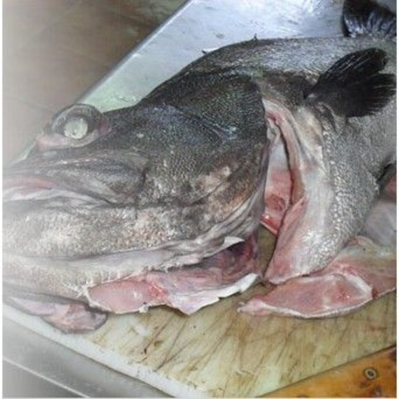 Pescados: Especialidades de Mijedo