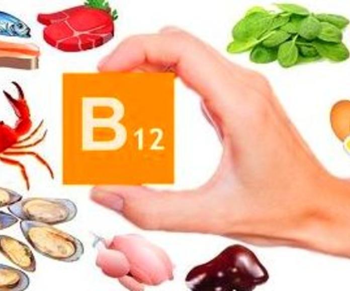 Alimentación rica en vitamina B12, información específica. Centro de Psicología Bienestar de Alcobendas, en Madrid.