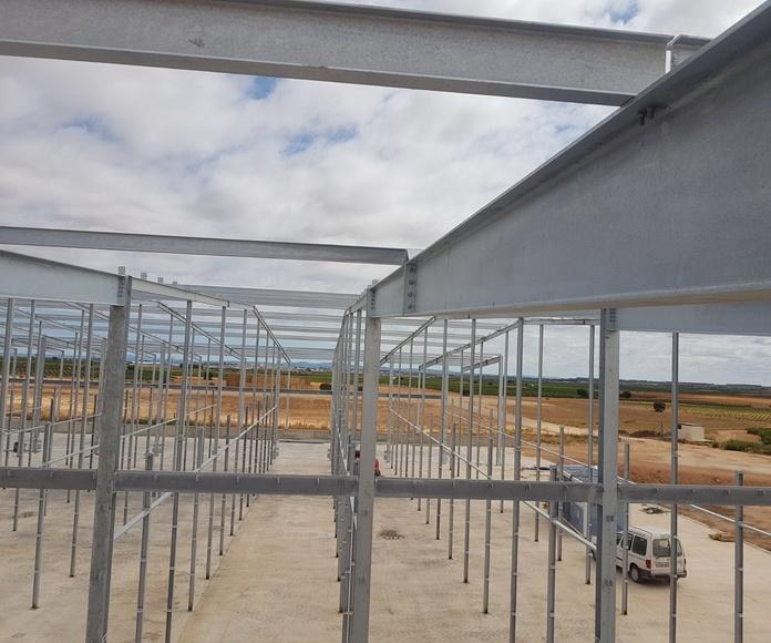Construcción de naves industriales: Servicios de Servicios Inoxidables Albacete
