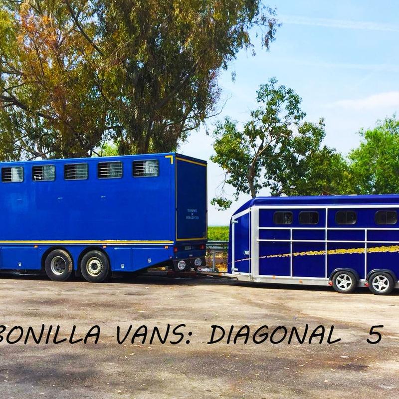 DIAGONAL 5: Modelos de Bonilla Vans