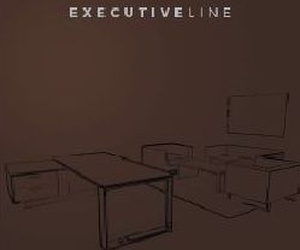 DESCARGA DEL CATALOGO EXECUTIVE LINES