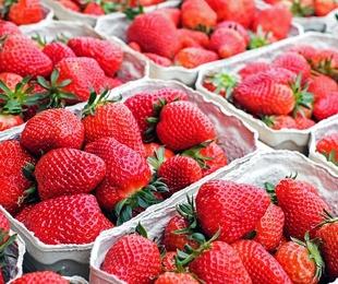 Mayoristas de frutas y hortalizas