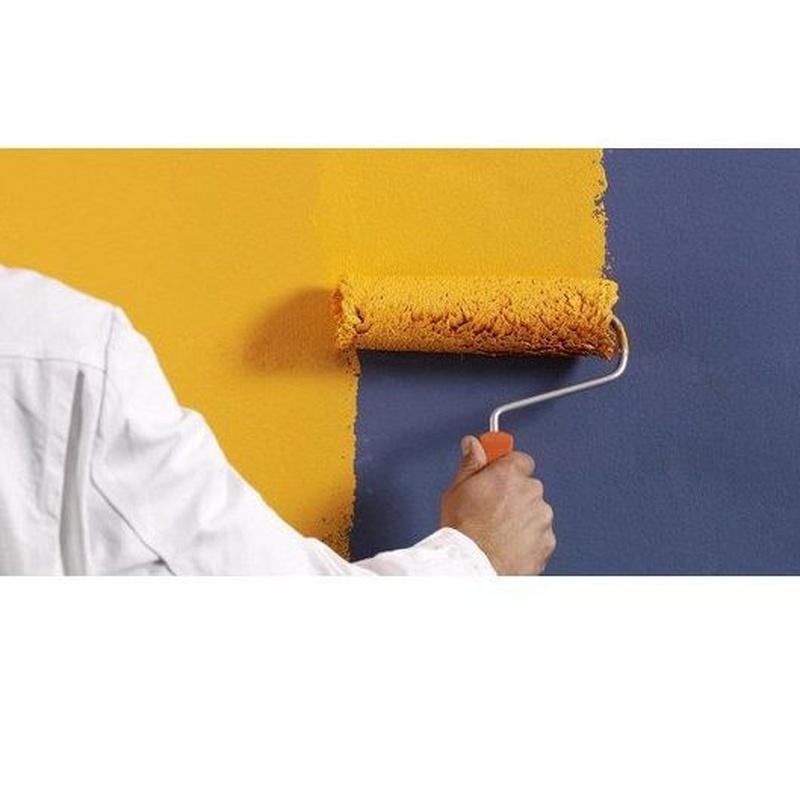 Pintura: Servicios de .