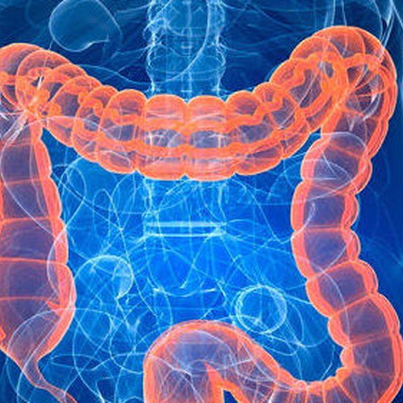Digestivo : Servicios médicos de Centro Médico Trébol