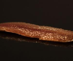 Sardinas ahumadas de calidad