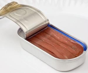 Conservas de anchoas en salazón en Santoña