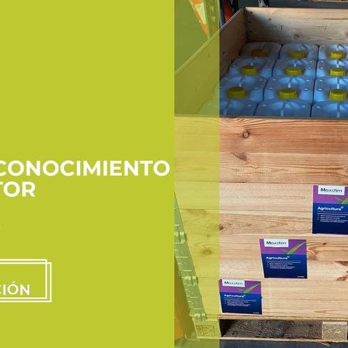 Tratamientos fitosanitarios en Murcia | Fitopalma