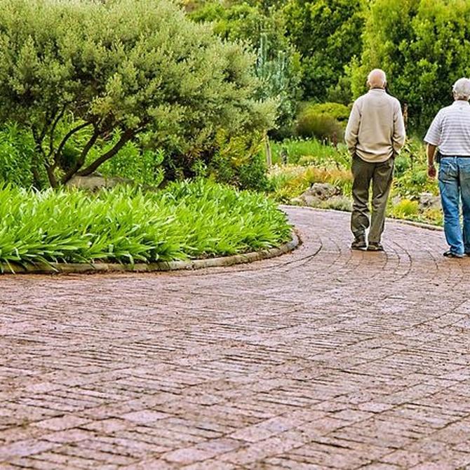 ¿Cómo afecta el calor a los ancianos?