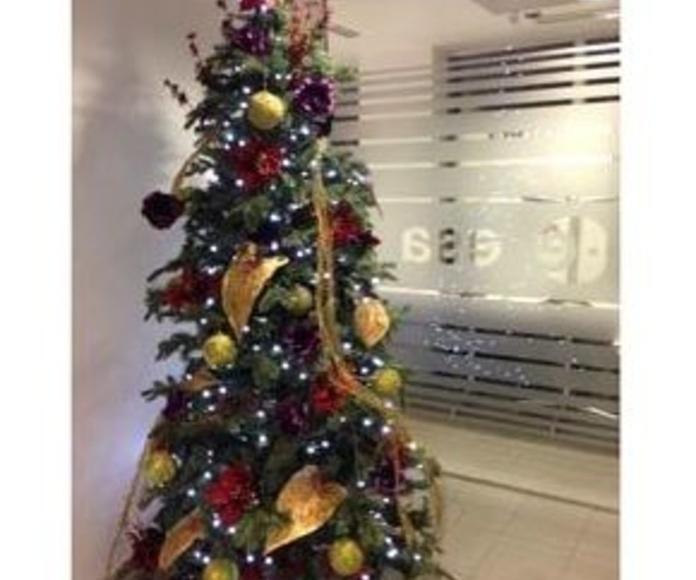 Decoración de Navidad: Servicios de Concept Decoración