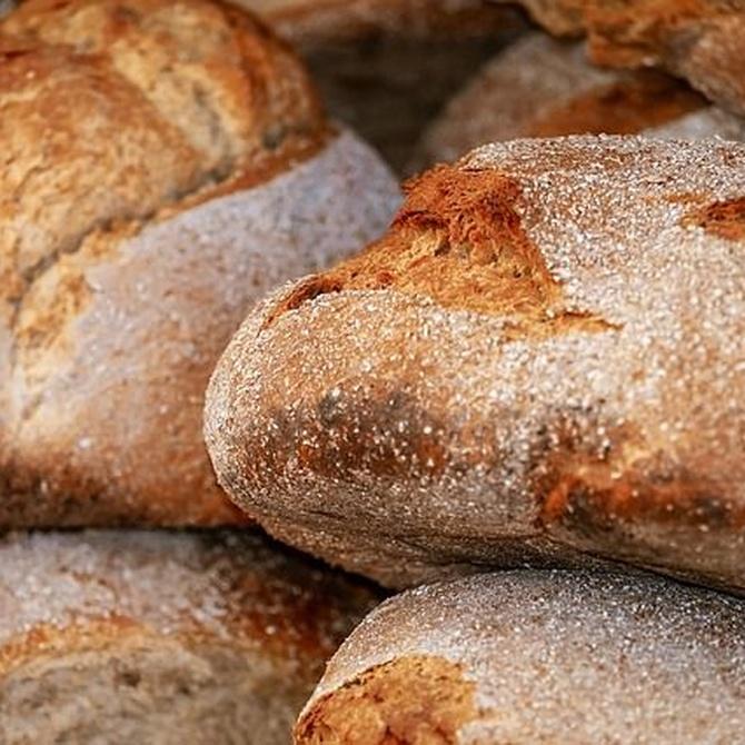 Pan con masa madre en Santa Perpetua de Mogoda