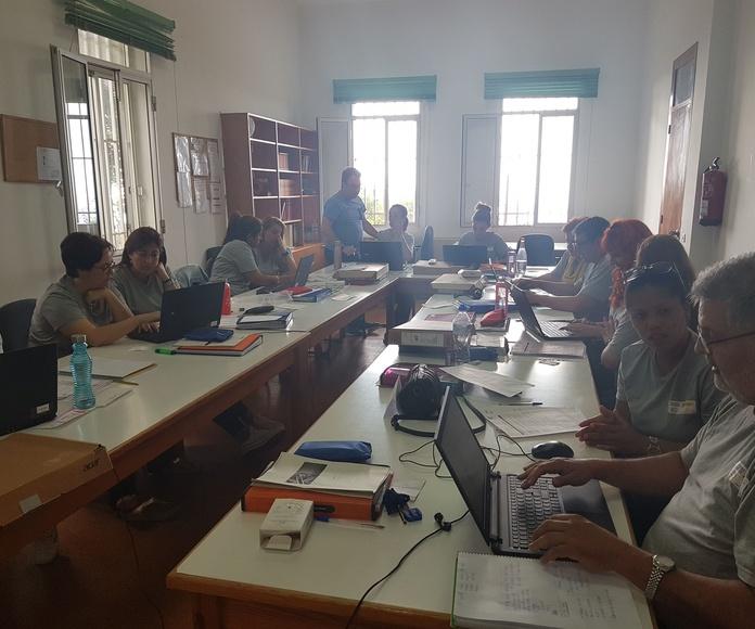 Programación de actividades de Inglés: Proyectos y Servicios de Asociación Domitila