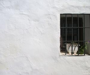 Cal para pintar fachadas