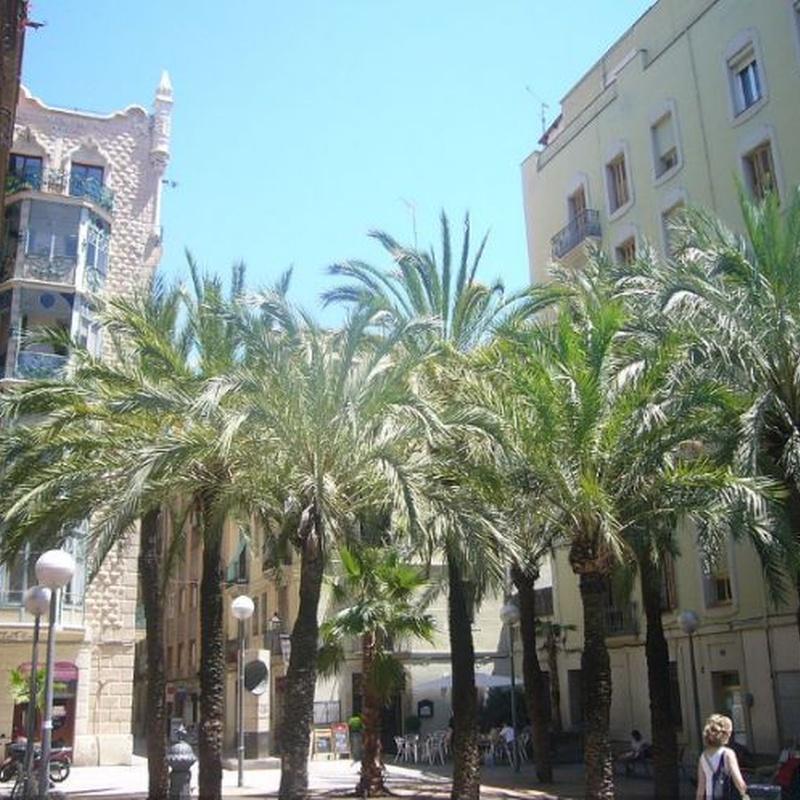 Local comercial en Barcelona: Nuestros inmuebles de CAC Investments