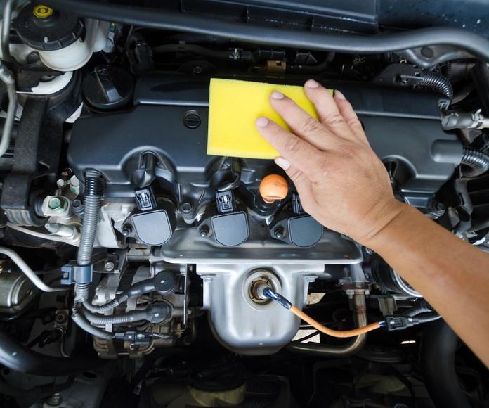 Limpieza de motores: Servicios de ECOBOX