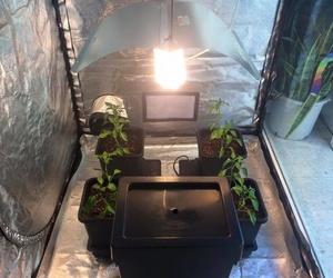 Iluminación y ventilación