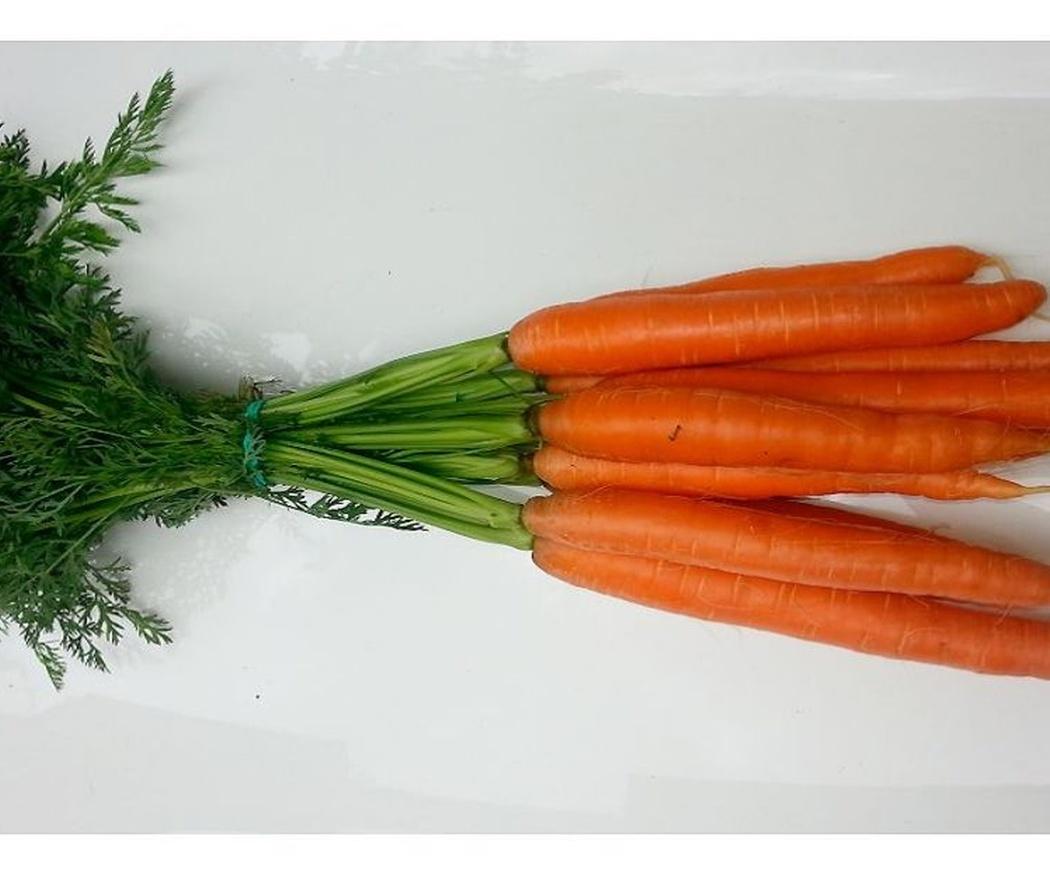 No tires las hojas de las zanahorias, aprovéchalas