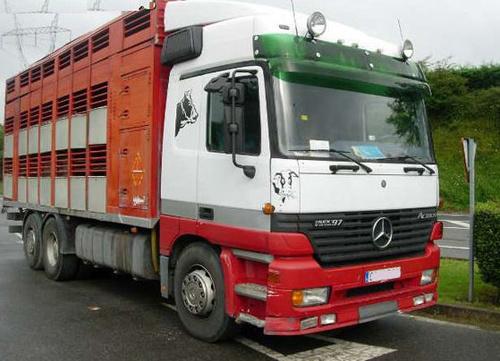 Transporte de Animales Irazola en Vizcaya