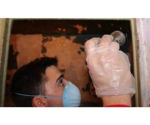 Todos los productos y servicios de Desinfección, desinsectación y desratización: Ecoserra
