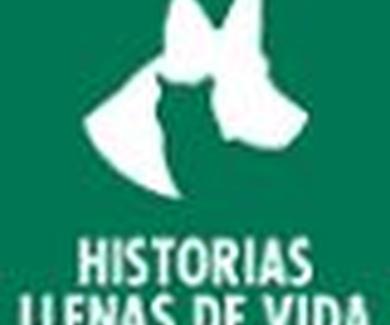 HISTORIAS LLENAS DE VIDA
