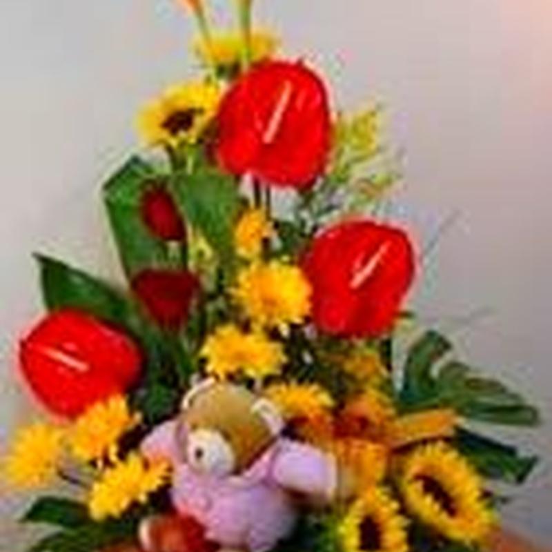Regalos originales: Catálogo de Cardona Flors i Plantes