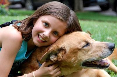Peluquería e higiene: Itacan Peluquería Canina