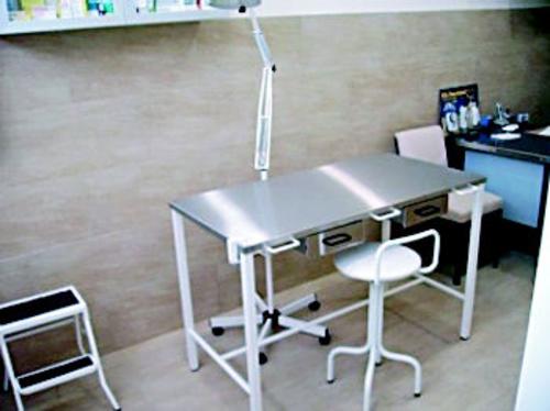 Fotos de Veterinarios en Las Rozas de Madrid   Centro Veterinario La Tortuga