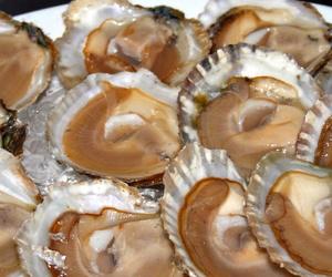 Ración de ostras