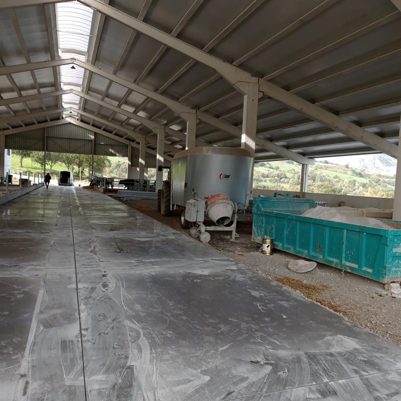 Mantenimiento de soleras de hormigón impreso y pistas deportivas: Servicios de Pavimentos Asón