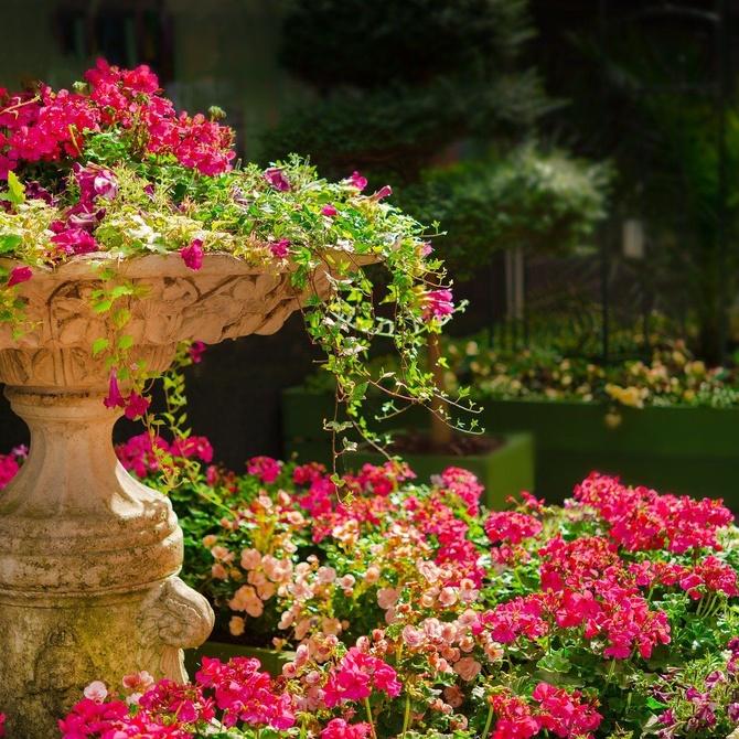 Mantenimiento del jardín en primavera