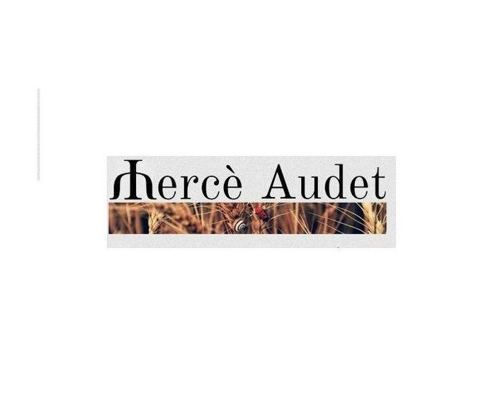 Depresión / Depressió: Tratamientos de Audet Bordoll, Mercè