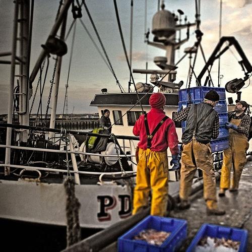 Especialistas en pescado y marisco fresco en Noia