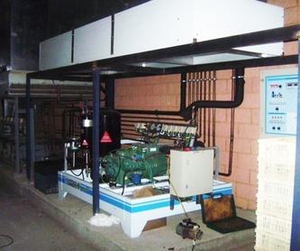 Extracción: Productos y servicios de Luparia Instalaciones