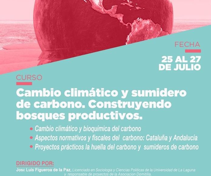 Cambio climático y sumideros de carbono. Construyendo bosques productivos
