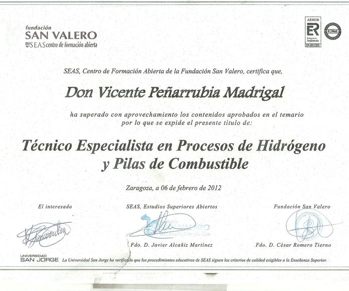 TECNICO ESPECIALISTA PROCESOS DE HIDRÓGENO Y PILAS DE COMBUSTIBLE