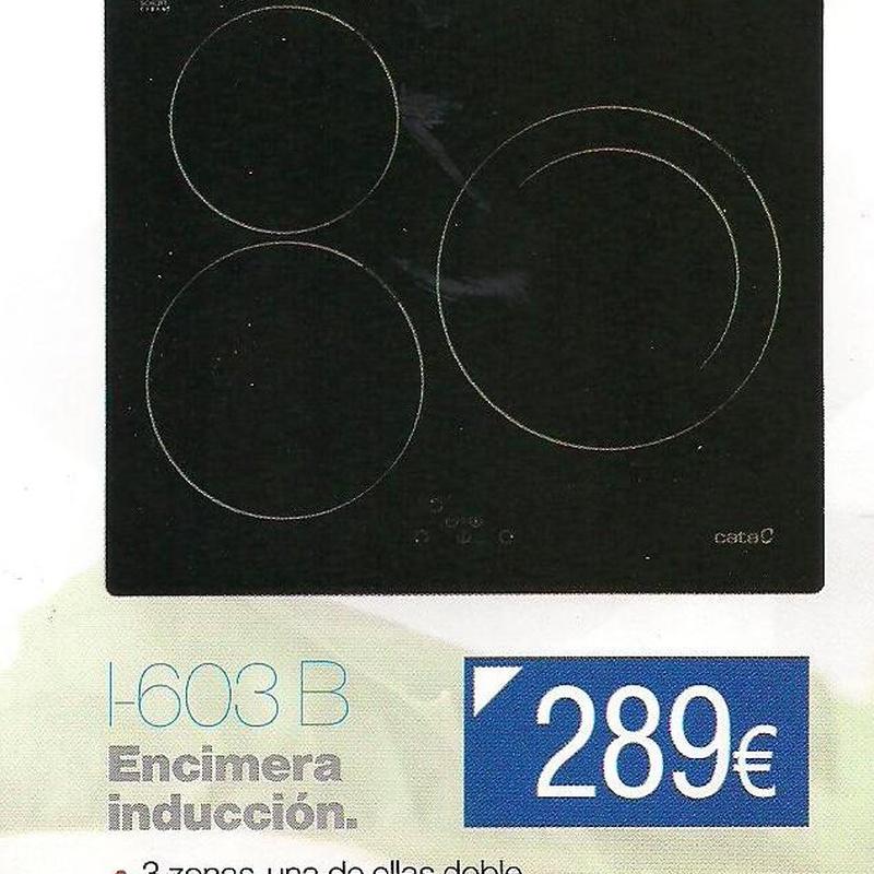 Inducción I-603 B