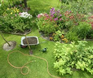 Plantado de jardines
