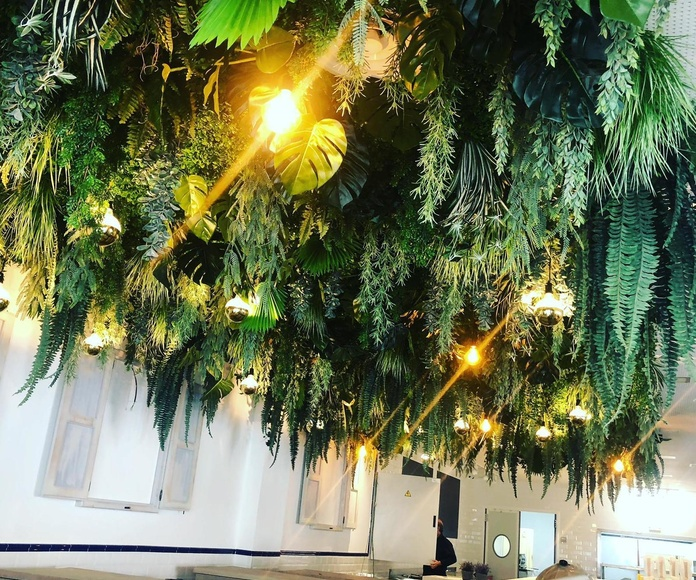 Restaurante en las rozas jardin aéreo tropical con iluminacion