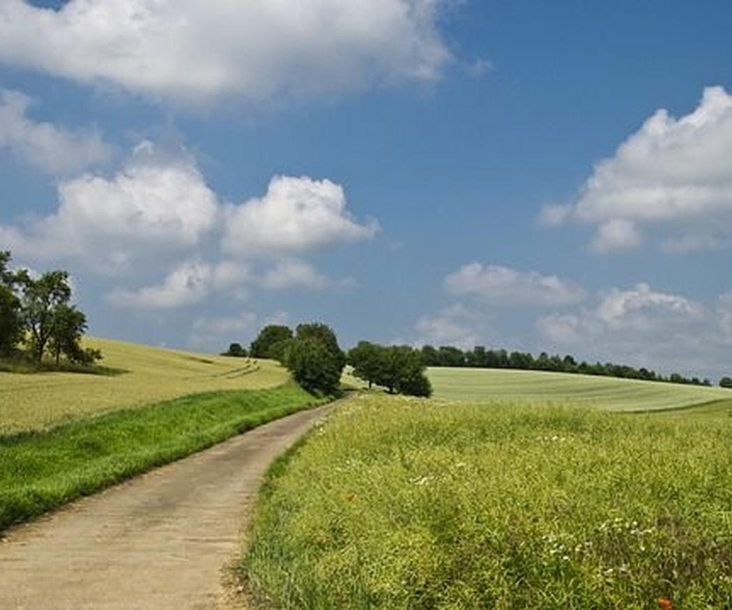 ¡Me voy a vivir al campo!